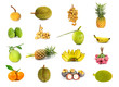 set of  fruits isolated on white background