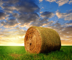 straw bale in a lush green field in the sunset