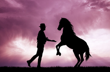 Man and horse