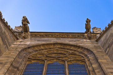 Gargoyles at the wall of saint Stephen's cathedral, Vienna