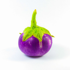 A small purple eggplant on white background