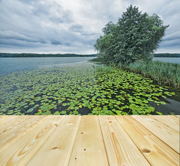 Lake with greenery with wooden light floor