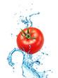 Tomato on water splash isolated on white background