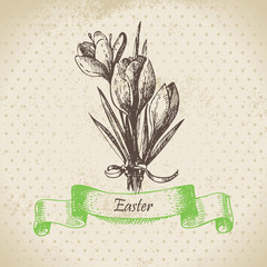 Vintage Easter background with crocus flowers. Hand drawn illust