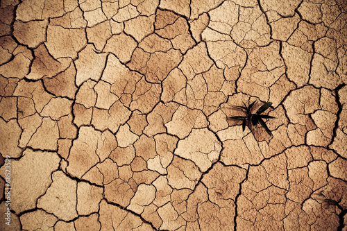 dry cracked clay ground,global warming - 68523529