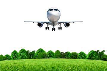 uçak ve orman çayır