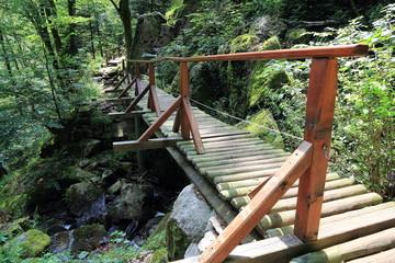Petits ponts dans la vallée de la Wormsa dans les Vosges