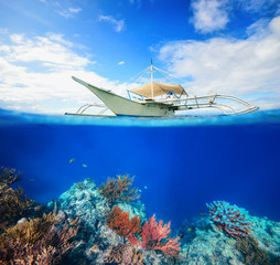 Underwater scena coral reef