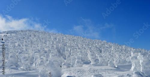 山形蔵王の樹氷群