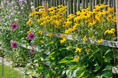 In the garden - 68531162