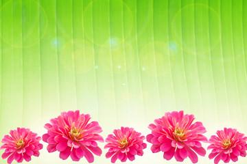 Pink gerbera flower frame on green