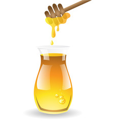 Honey vector on white background