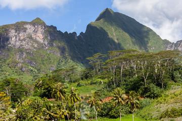 Montagne e vegetazione di Moorea, Polinesia francese