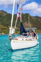 Barca a vela ancorata in mare tropicale