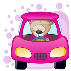 Teddy Bear girl in a car