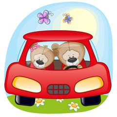 Two Teddy Bears in a car
