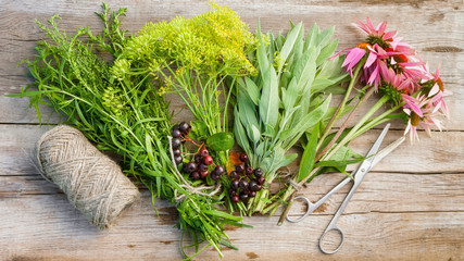 bunches of herbs, coneflowers, scissors and jute rope on wooden