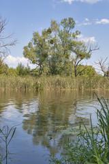 Ros river landscape