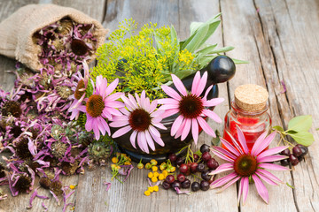 coneflowers and dill in mortar, vial with essential oil on woode