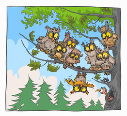 Funny Cartoon Owls on a tree.