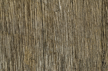 texture  grungy wooden background  : copy space