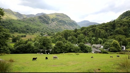 Lake District country scene Seatoller Borrowdale Valley