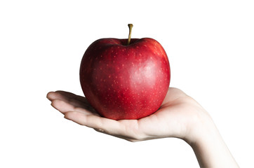 Big and red apple in the women's elegant hand