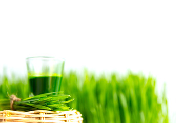 Shot glass of wheat grass with fresh cut wheat grass