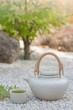 Green Tea Pot at Japanese Zen Garden