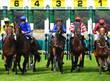 Leinwanddruck Bild - York Races