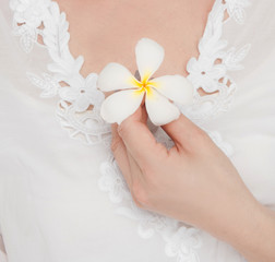 Sexy woman hands holding frangipani