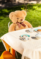 teddy bear sitting behind table and drinking tea
