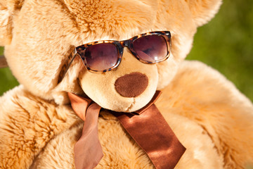 photo of brown teddy bear wearing sunglasses