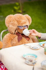 photo of girl giving tea to teddy bear in sunglasses