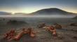 Brume matinale au Piton de la Fournaise, La Réunion.