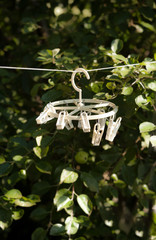 white clothespins hanging on rope at garden