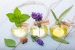 Leinwandbild Motiv Ätherische Öle - Minze, Lavendel, Salbei