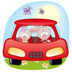 Two Rabbits in a car