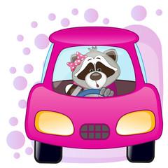 Raccoon girl in a car