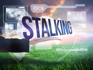 Businesswomans hand presenting the word stalking