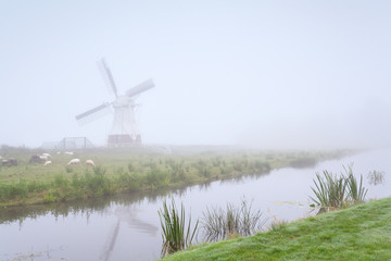 windmill and sheep by river in fog