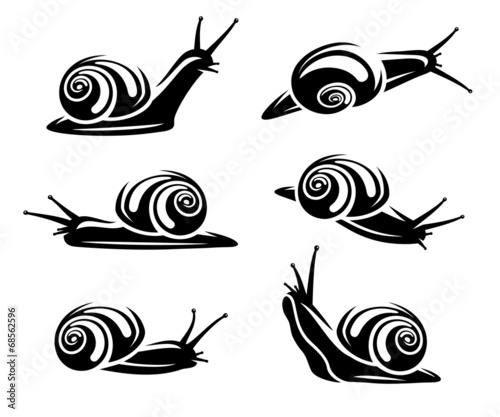 Snail set. Vector - 68562596
