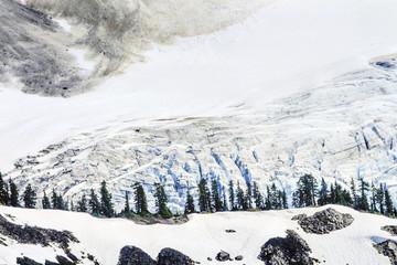 Mount Shuksan Glacier Evergreens Artist Point Washington