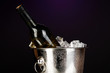 Bottle of wine in ice bucket on darck purple background