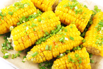 Grilled corn cobs, close-up