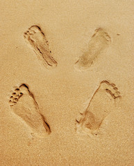 footprints after sex on the beach