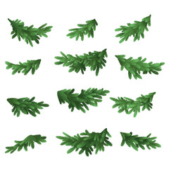 Christmas tree green branches set