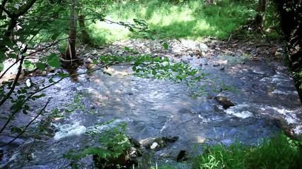 Agua fluyendo por el rio.