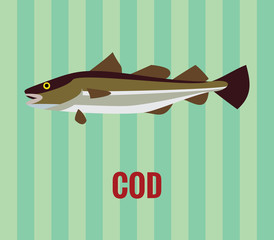 Cod drawing on green background