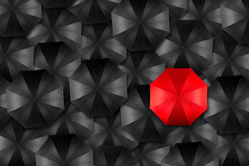 umbrella leader concept